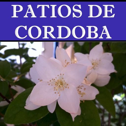 Cordoba y sus patios